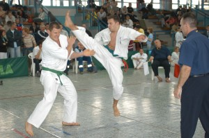 Karate EB