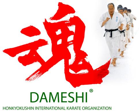 dameshi2